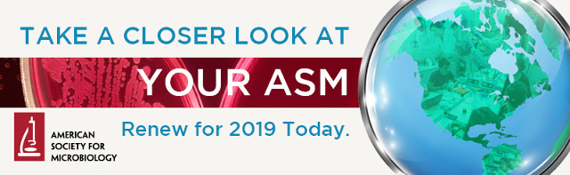 Take A Closer Look At Your ASM
